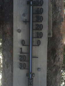 +11°C på Eikvelta