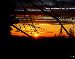 Solnedgang pa Lauvhogda_7