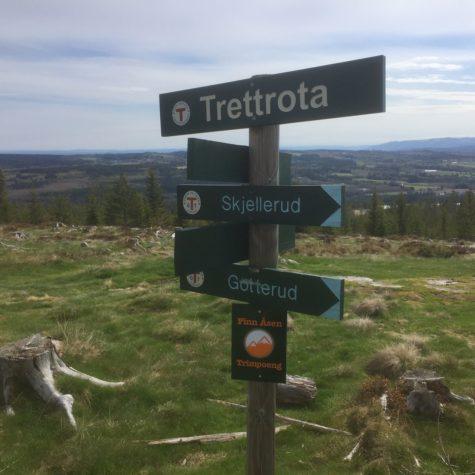 Trettrota_1